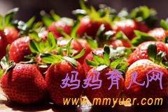 春季摘草莓预防小儿感冒腹泻 健康出游享受好春光