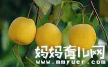 感冒吃什么水果好?孕妇也能吃的水果