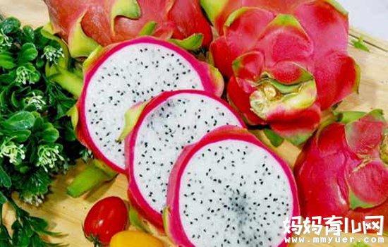 火龙果口味清淡耐吃 三大理由告诉你孕妇可以吃火龙果吗