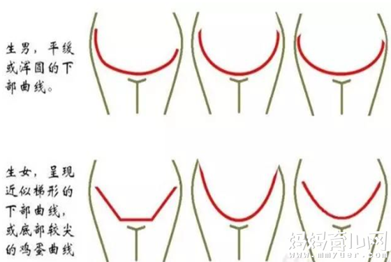 教你如何辨别怀男孩的孕妇肚子图(附图解)