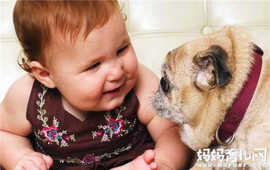 别再问家里有宝宝能养狗吗 注意这4点就能让宝宝远离伤害
