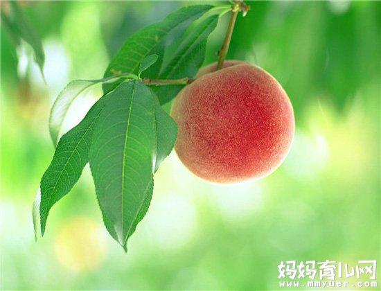 疑问两岁宝宝可以吃桃子吗 医生回答说:能不吃就不吃