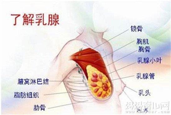 乳腺增生的早期症状要识别 乳腺增生吃什么药最好