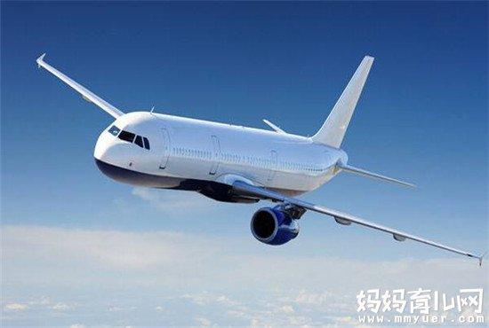 怀孕8个月可以坐飞机吗 孕晚期乘坐飞机的相关规定