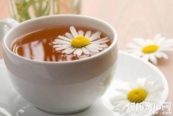 孕妇能喝菊花茶吗的终级答案 有点让人出其不意