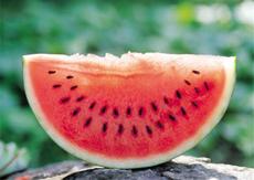 坐月子可以吃西瓜吗 坐月子吃什么水果滋补又下奶