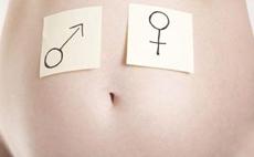 为什么说双肾分离就是男宝?双肾分离和胎儿性别有何关系