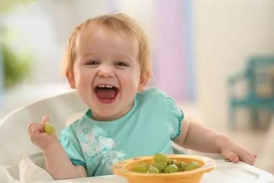 宝宝营养粥做法大全 1-2岁宝宝专属的营养餐