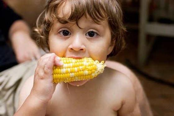 2岁宝宝食谱大全及做法 美味营养的家常菜谱精选