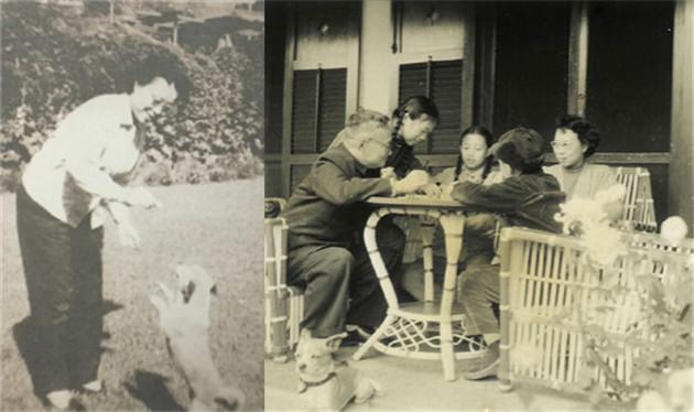 《小狗包弟》经典故事 巴金随想录 儿童经典故事