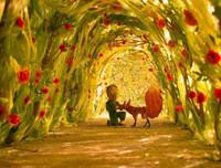 睡前故事《小王子》小孩子爱听的经典童话故事100篇