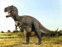 最温馨的60个睡前故事 《恐龙的故事》小