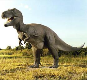 大班美术教案《恐龙》大胆表现自己对恐龙的了解