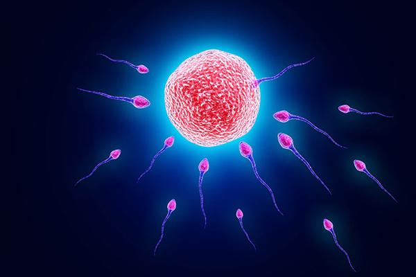【亲】男性精子活力低的原因居然是这个 当心会导致不育