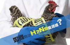 2018年h7n9禽流感疫情 禽流感最新消息2018年