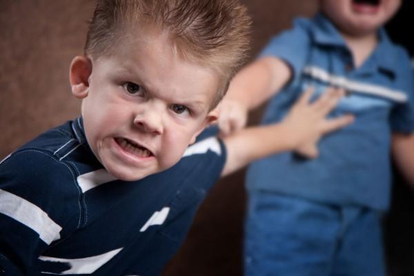 2岁宝宝的攻击行为原因 孩子的性格离不开家庭快乐赛车开奖网