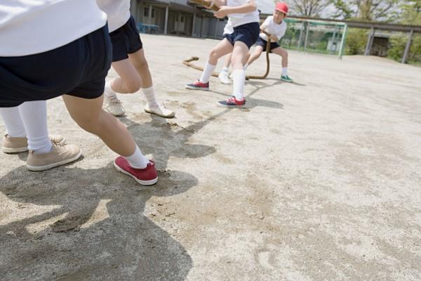 幼儿园秋季运动会方案 来场别开生面的亲子运动会吧