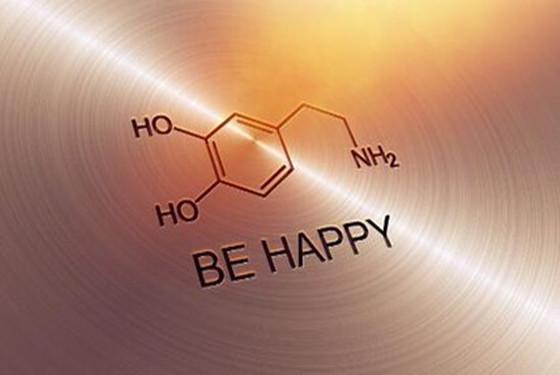 荷尔蒙和多巴胺的区别 今天我算是把它们给弄懂了