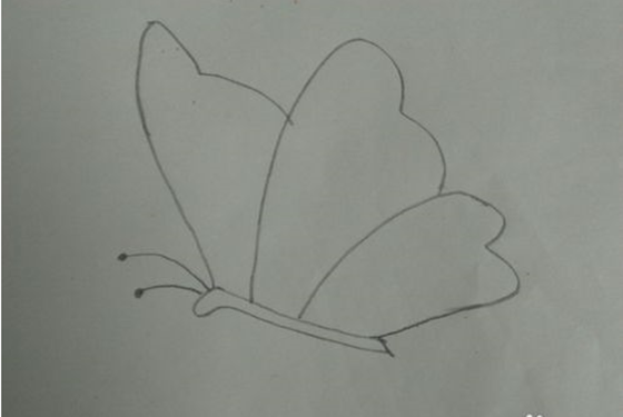掌握了蝴蝶简笔画怎么画的小窍门 你就会觉得好简单图片
