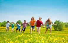 幼儿园庆五一活动方案 最有趣最新颖的庆五一方案
